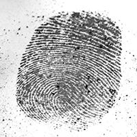 Fingerprinting Services in San Fernando Valley, CA